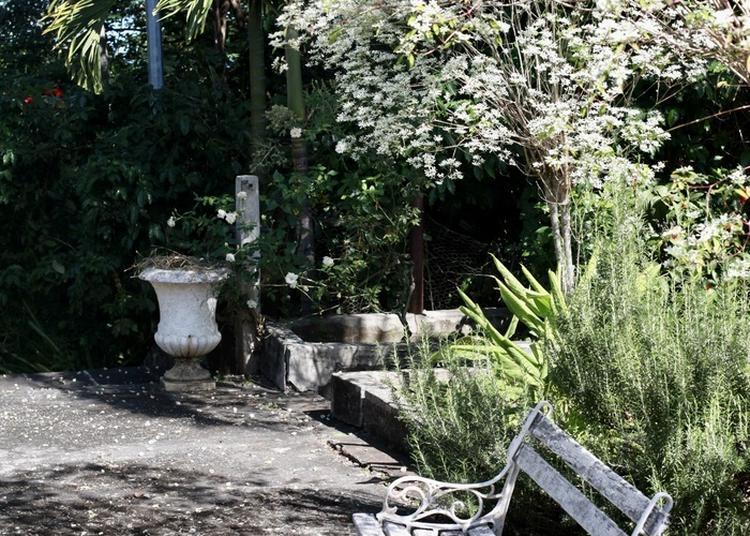 Visite Commentée Du Jardin De La Maison Lenormand à Ravine Des Cabris