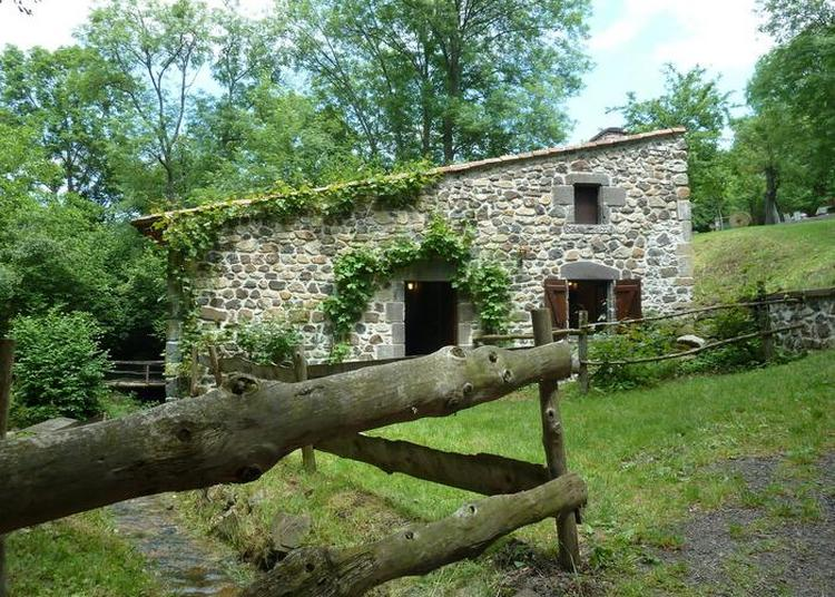 Visite Commentée Du Moulin De Ceyrat.