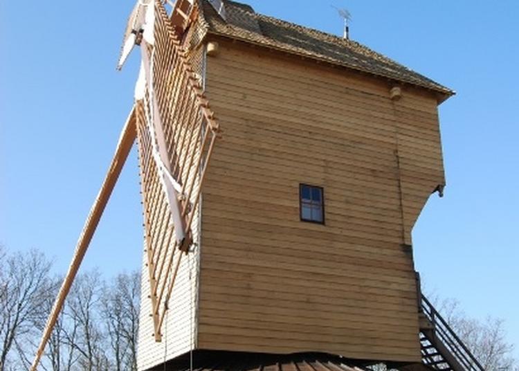 Visite Commentée Du Moulin Historique De Sannois