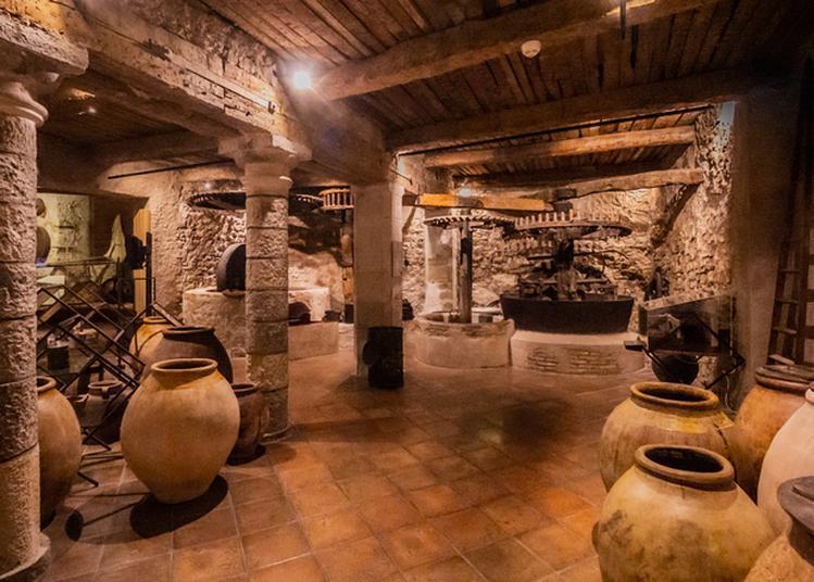 Visite Commentée Du Musée à Draguignan