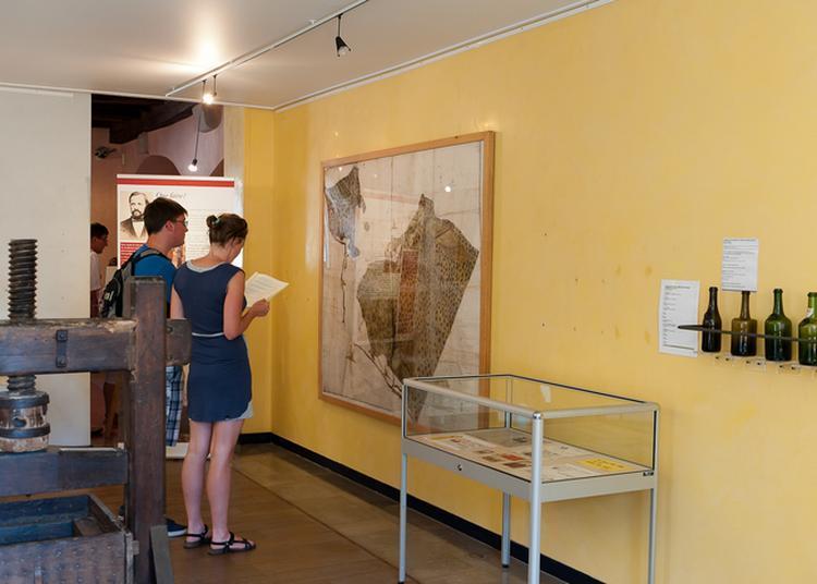Visite Commentée Du Musée De La Vigne Et Du Vin D'arbois à Arbois