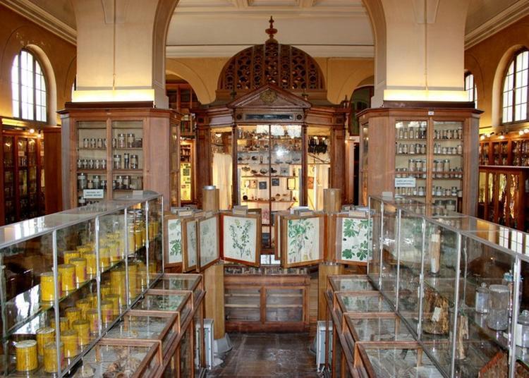 Visite Commentée Du Musée De Matière Médicale Et Ouvrages De La Bibliothèque De Pharmacie à Paris 6ème