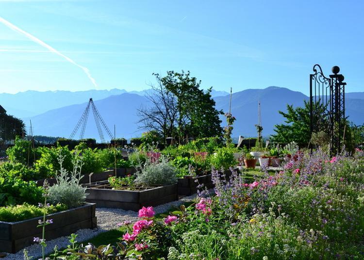 Visite Commentée Du Potager En 88 Carrés Et Des Jardins Sauvages. à Saint Pierre d'Albigny