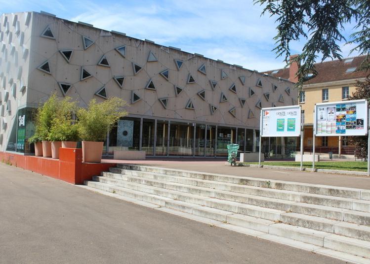 Visite Commentée Du Silex à Auxerre