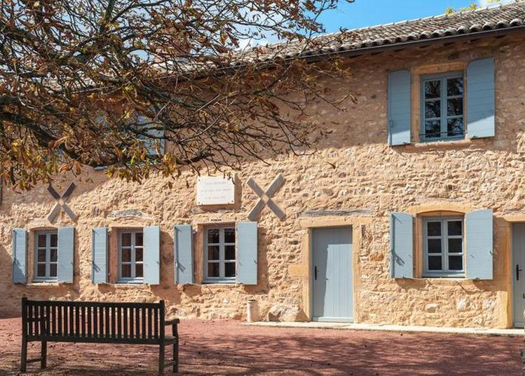 Visite Commentée Du Site. à Saint Julien