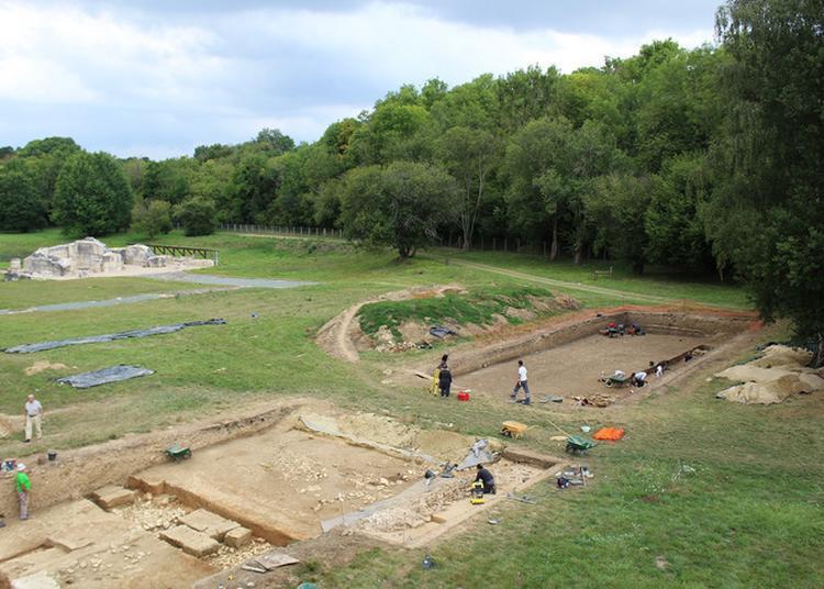 Visite Commentée Du Site Archéologique De Genainville