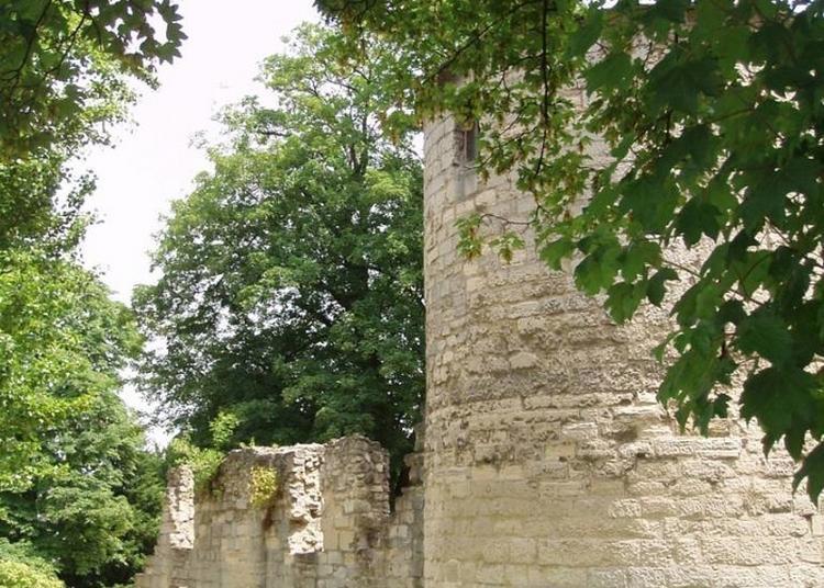 Visite Commentée Du Site De L'abbaye à Saint Maur des Fosses