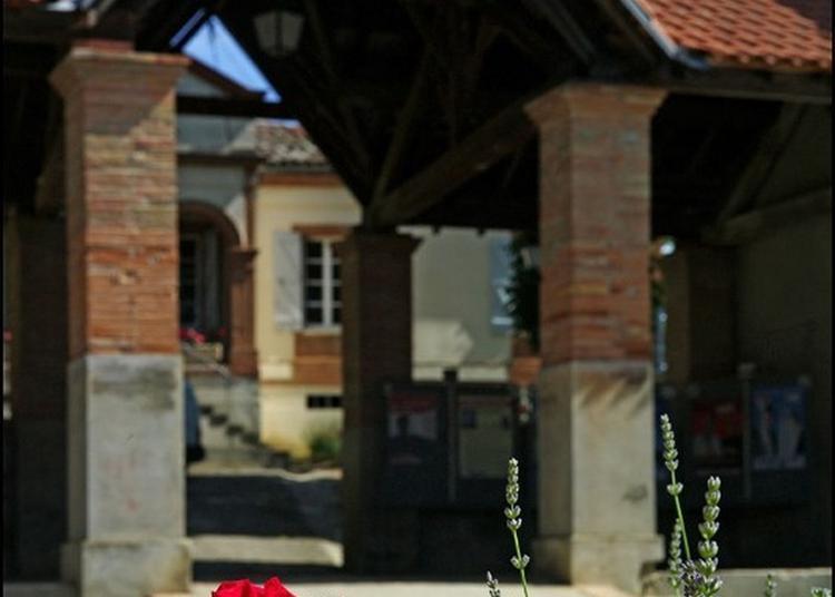 Visite Commentée Du Village Et De L'église De Thil