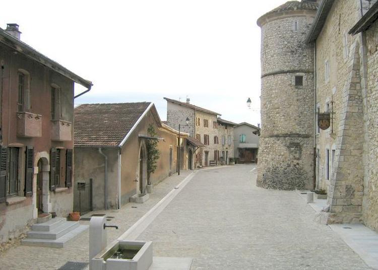 Visite Commentée Du Village, Son Histoire, Celle De Ses Châteaux  Et De Son église Au Plafond Inscrit Aux Mh. à Saint Andre en Royans