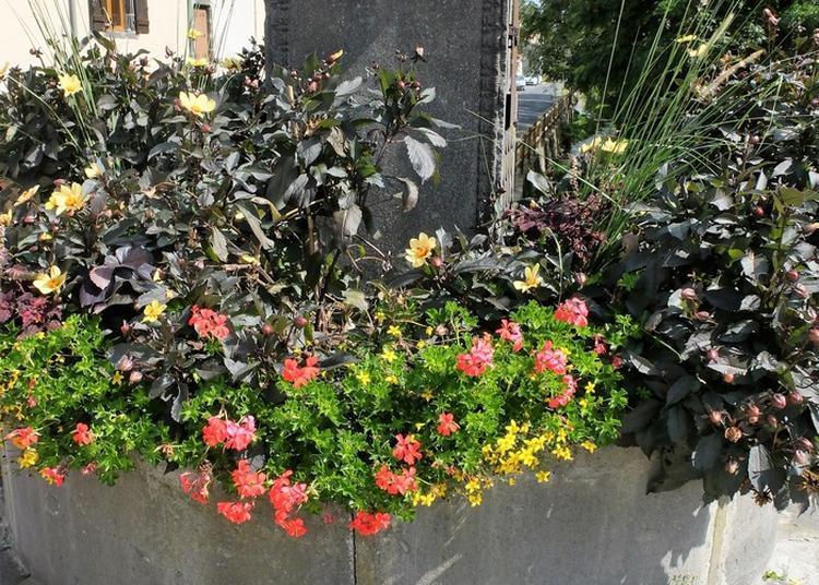 Visite Commentée Espaces Verts Et Fleurissement. à Riom