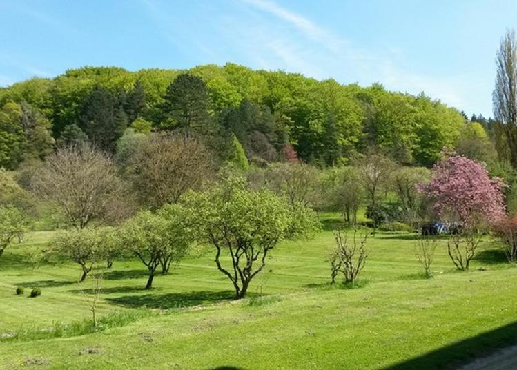 Visite Commentée Exceptionnelle D'un Parc D'une Abbaye Datée Du Xviiie Siècle. à Cornieville