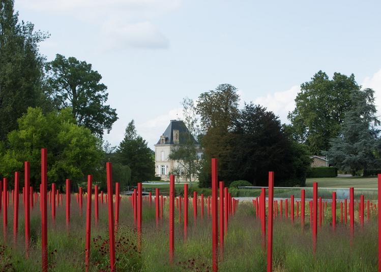 Visite Commentée : Jardin Millésimé à Leognan