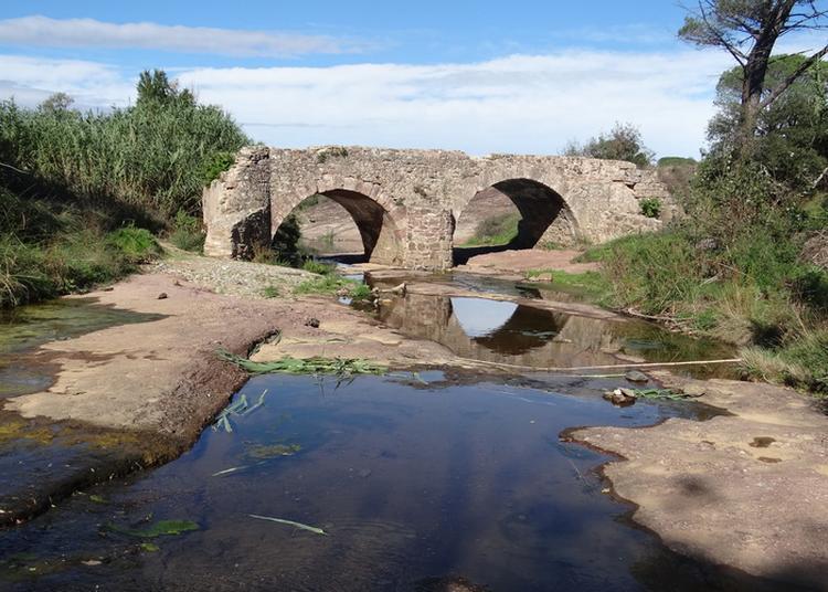 Visite Commentée La Route Des Vieux Ponts à Le Cannet des Maures