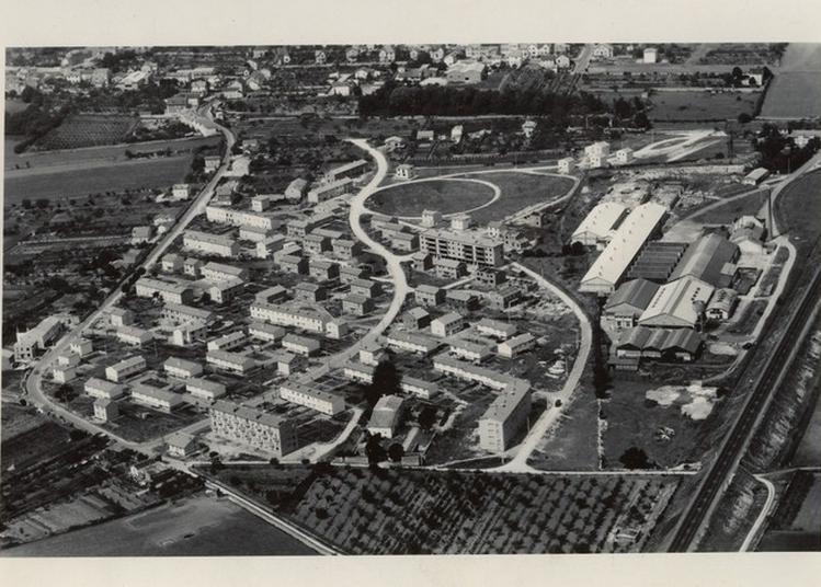 Visite Commentée : Naissance D'un Quartier à Niort