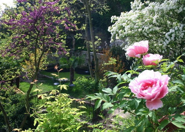 Visite Commentée Sur Les Traces D'un Jardin Monastique. à Tournon sur Rhone