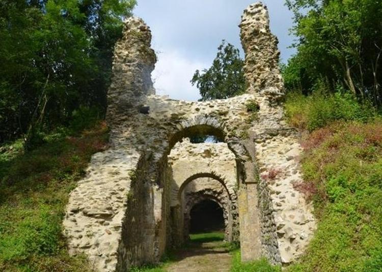 Visite Contée à Château Ganne à La Pommeraye