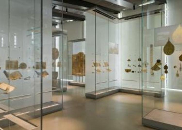 Visite Contée Du Musée à Paris 5ème