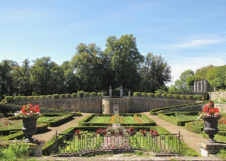Visite D'un Jardin Régulier. à Donjeux