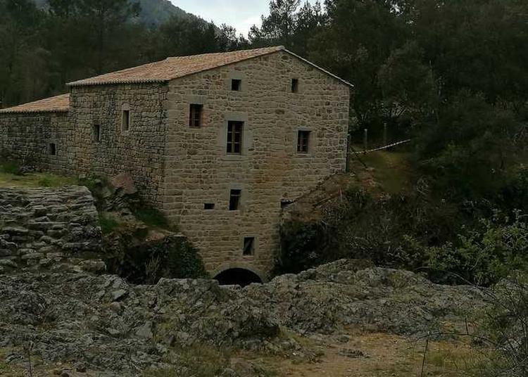 Visite D'un Moulin à Eau à Saint Andre Lachamp