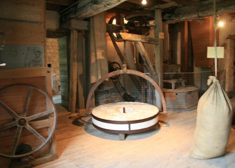 Visite D'un Moulin à Eau à Messanges