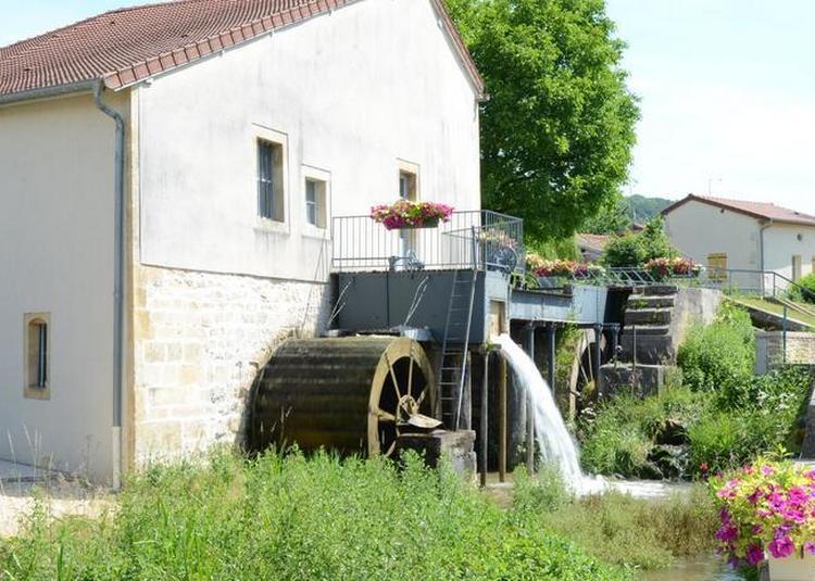 Visite D'un Moulin à Eau Avec Ses Diverses Utilisations à Poissons