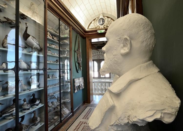 Visite D'un Musée Insolite à Beaufort en Vallee