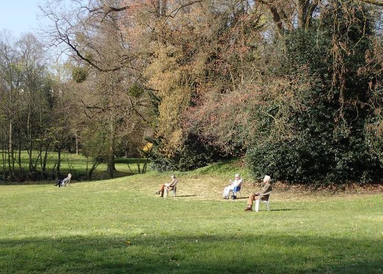 Visite D'un Parc De Style Anglais à Versailles