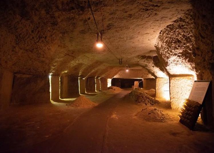 Visite De Caves Troglodytes De Blanc Foussy à Rochecorbon