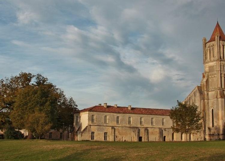 Visite De L'abbaye De Sablonceaux