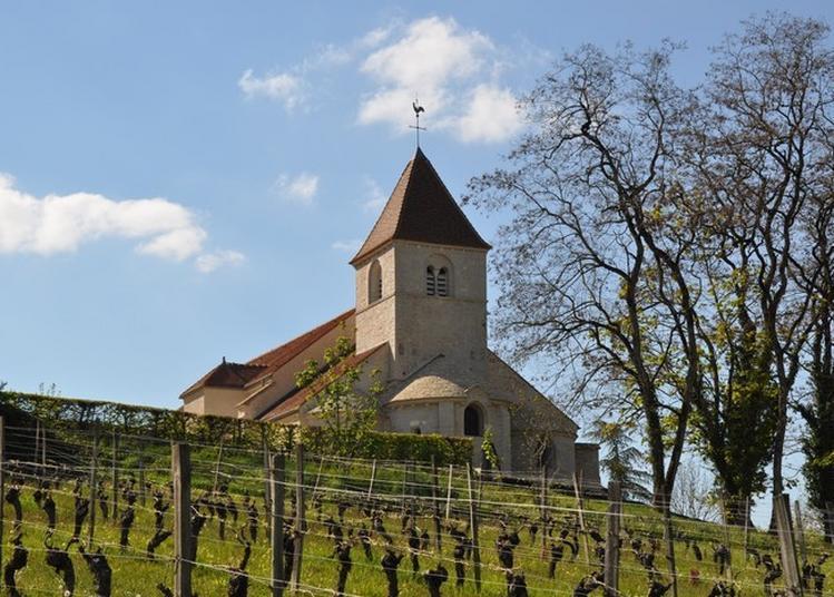 Visite De L'église Saint-saturnin De Reulle-vergy à Reulle Vergy