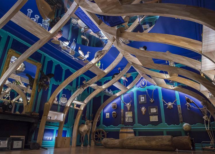 Visite De L'espace Muséographique Et Du Cabinet De Curiosités à Cuisery
