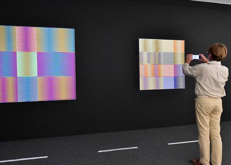 Visite De L'exposition Sud Est à Aix en Provence