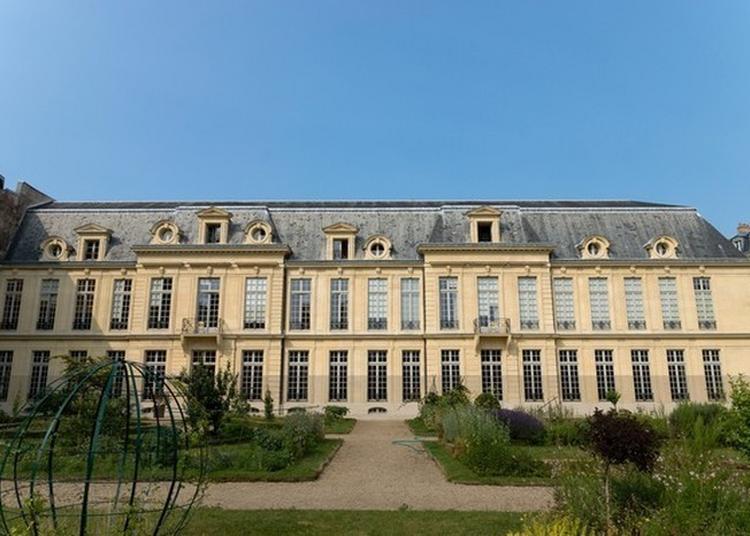 Visite De L'hôtel D'aumont à Paris 4ème