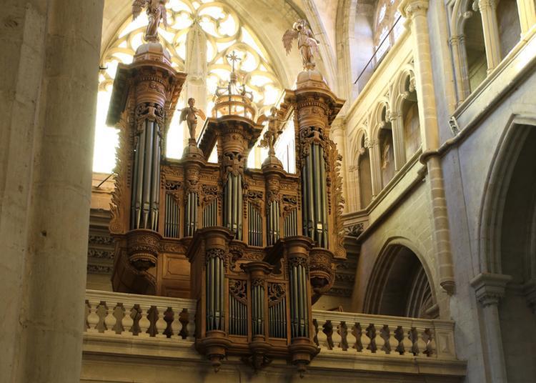 Visite De L'orgue Historique Scherrer/aubertin à Saint Antoine l'Abbaye