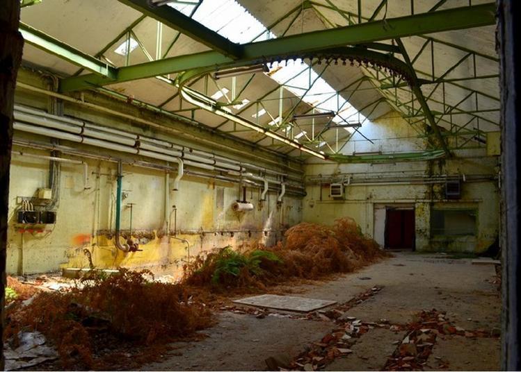 Visite De L'usine Textile Moreau à La Monnerie à Oradour sur Vayres