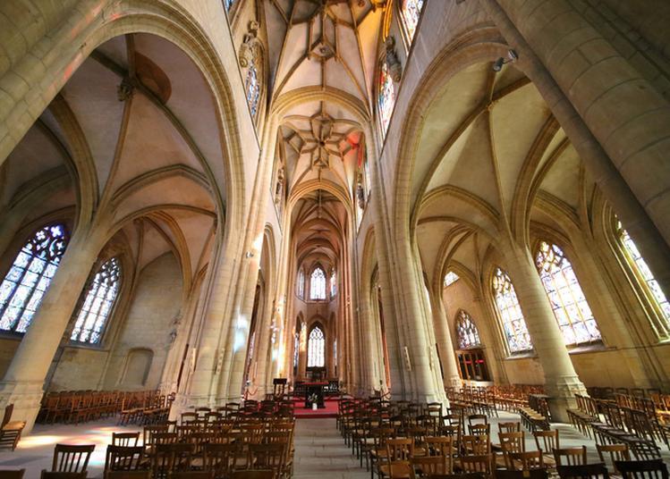 Visite De La Basilique Notre-dame-d'espérance à Charleville Mezieres