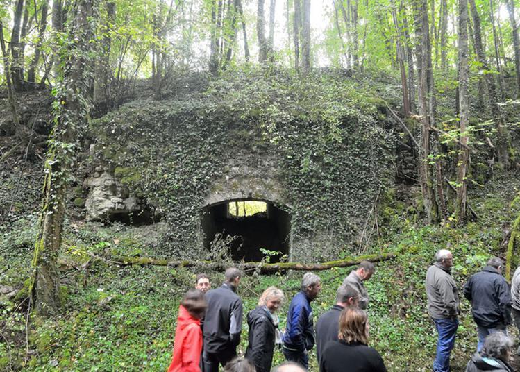 Visite De La Bsmat : Fossés De La Citadelle à Langres