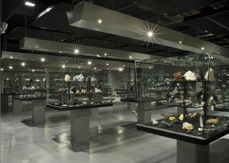 Visite De La Collection De Minéraux De Sorbonne-université à Paris 5ème