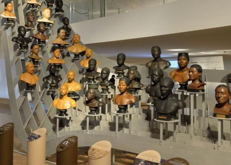 Visite De La Galerie De L'homme à Paris