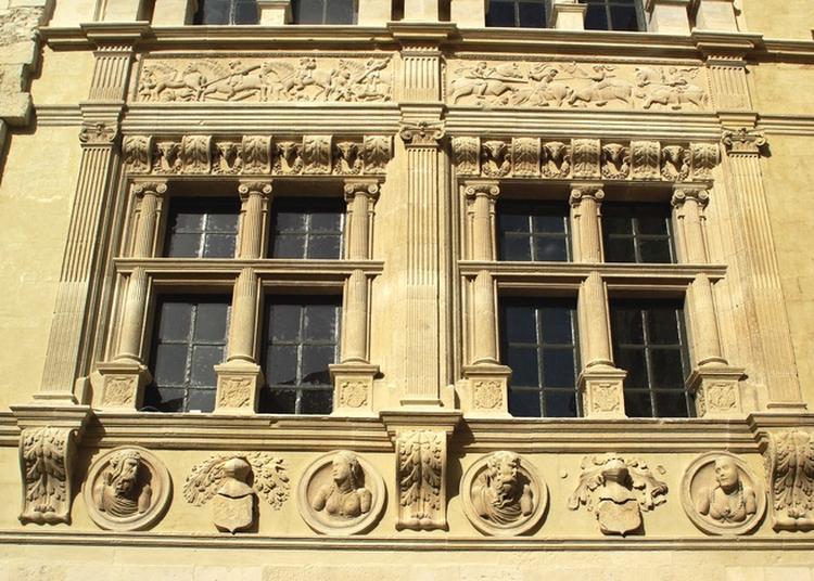 Visite De  La Maison Des Chevaliers, Du Moyen-Âge à Aujourd'hui à Viviers