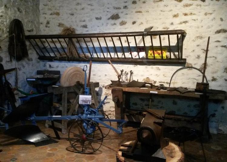 Visite De La Métairie, Musée Des Arts Et Traditions Populaires De Sucy à Sucy en Brie