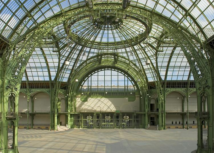 Visite De La Nef Du Grand Palais à Paris 8ème