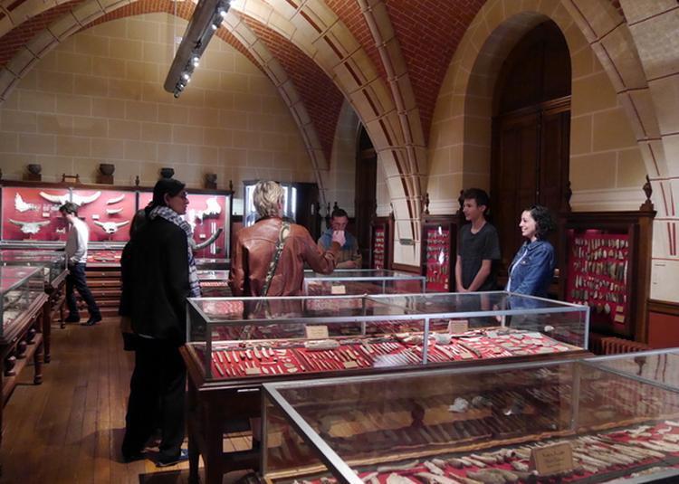 Visite De La Salle Piette à Saint Germain en Laye