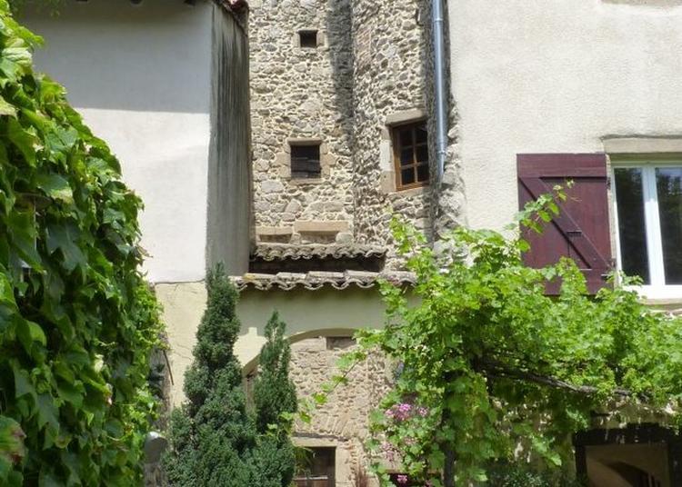 Visite De La Tour Des Perchés Et De La Galerie D'art à Condrieu