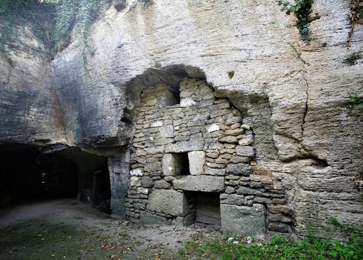 Visite De Troglodytes Et Sarcophages, Le Bestiaire  Imaginaire Du Moyen âge à Doue la Fontaine