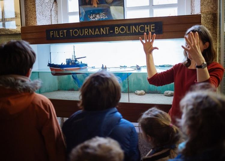 Visite Décalée Du Musée De La Pêche à Concarneau