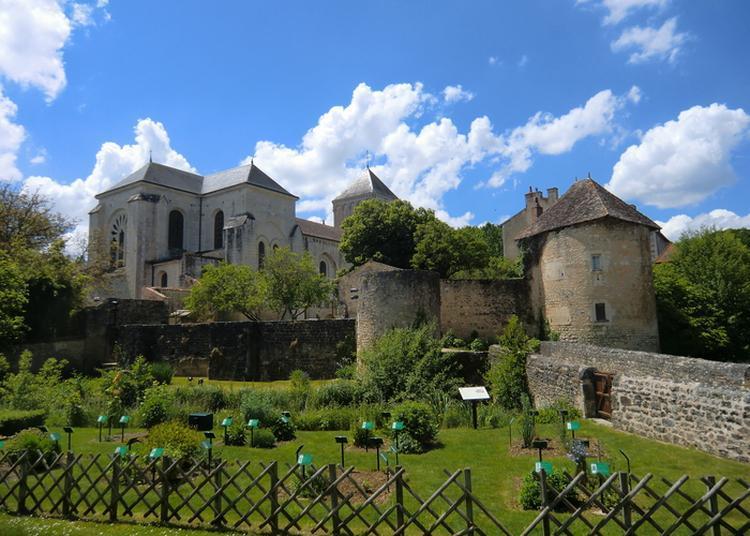 Visite-découverte Du Site Abbatial à Nouaille Maupertuis