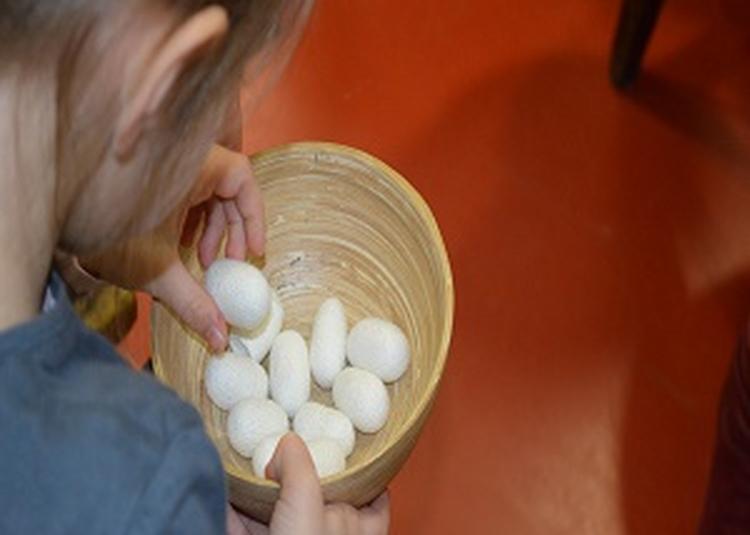 Visite découverte pour les enfants : « du papillon au tissu de soie » à Lyon