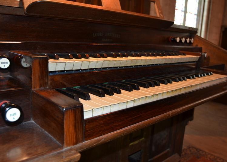 Visite Découverte Sur Grand écran Et En Tribune Suivie D'un Concert D'orgue à Niort