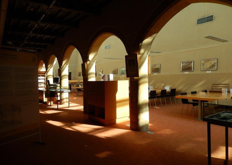Visite Des Archives Municipales De Metz